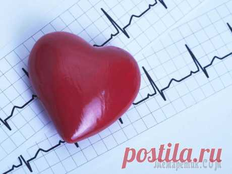 Гипертрофия левого желудочка: причины, лечение и последствия Миокард – это самый мощный мышечный слой стенки сердца, образованный клетками кардиомиоцитами. Эта ткань присутствует и в предсердиях, и в желудочках, но сокращается по-разному. Миокард снабжен провод...