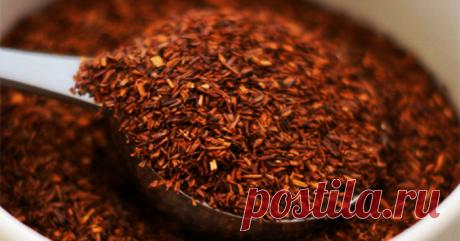 Польза чая ройбуш и его влияние на ваше здоровье