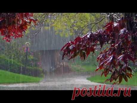 Дождь, гром, гроза Расслабляющие звуки природы Усыпляющие звуки летнего дождя