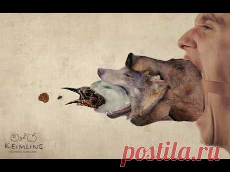 Скованные одной цепью рабства люди и животные, в своей беспощадности губят жизни друг друга. Выход?