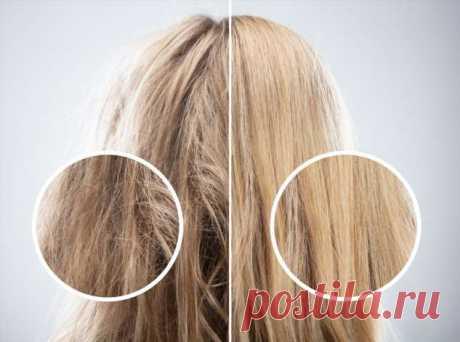 3 совета, как быстро восстановить волосы после зимы | Люблю Себя