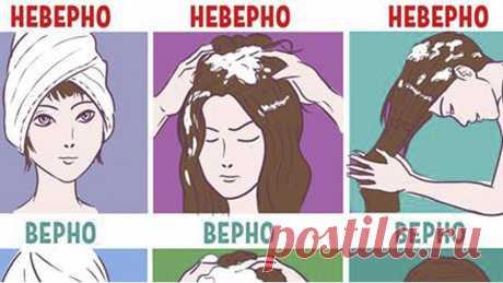 Как перестать мыть голову каждый день?