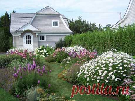 Цветы на даче: дизайн своими руками - дизайн клумб на даче