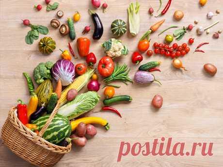 Хотите начать правильно питаться? Тогда вы в правильном месте - подробные советы от тех, кто ведет здоровый образ жизни.