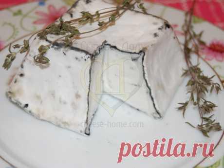 Рецепт сыра Валансе  Валансе -  это один из классических французских козьих сыров из долины Луары. Это мягкий сыр в характерной форме усеченной пирамидки, покрытой золой, которая припушена слоем белой плесени Penicillium candidum. В образовании корочки также участвует плесень Geotrichum candidum, которая делает поверхность сыра морщинистой. Традиционно при созревании Валансе применялся всего один вид плесени  новые рецепты салатов
