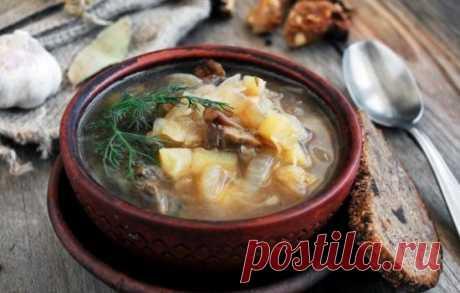 Las recetas de los shchi magros con las setas: los secretos de la elección de los ingredientes y