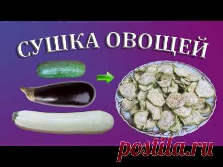 Сушка кабачков, баклажанов и огурцов на зиму   Сушеные овощи