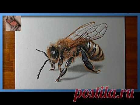 3D art пчела!