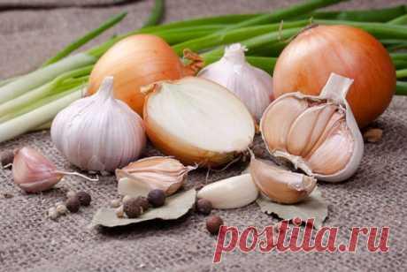 Антибиотики с грядки. Чем полезны лук, чеснок и черемша Лук, чеснок и черемша, пожалуй, самые ароматные овощи. Но специфический запах – не единственное их достоинство.