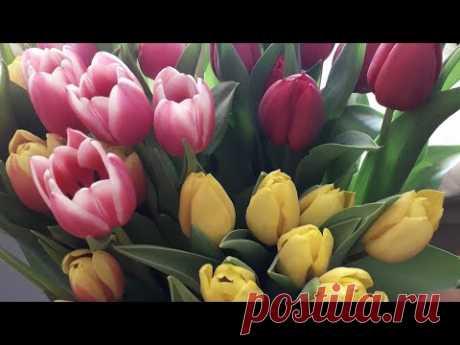 Тюльпаны канзаши из атласных лент .