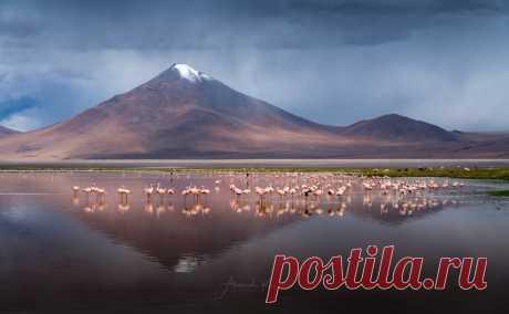 La tarde en el lago la Laguna-kolorado, Bolivia. El autor de la foto – Alejandro Kukrinov: nat-geo.ru\/photo\/user\/208171\/