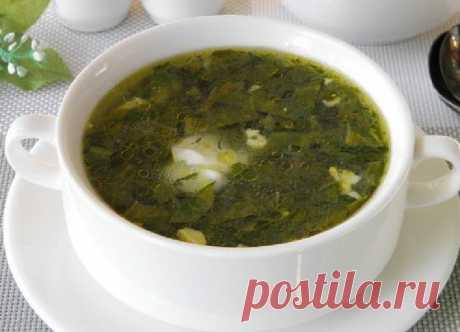 Щавелевые щи Вкусные щавелевые щи, приготовленные в домашних условиях, можно подать в качестве легкого обеда или ужина. Такой суп можно сделать как из свежей зелени, так и из замороженной. Вы также можете использовать мясной бульон в качестве основы. Подавайте суп с нежной сметаной.