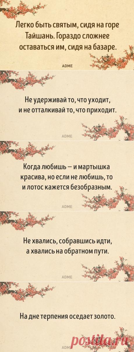 15мыслей откитайских мудрецов