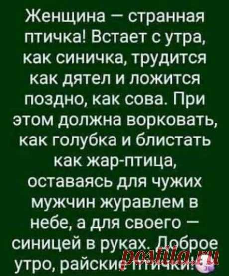 (21) Галина Степанова
