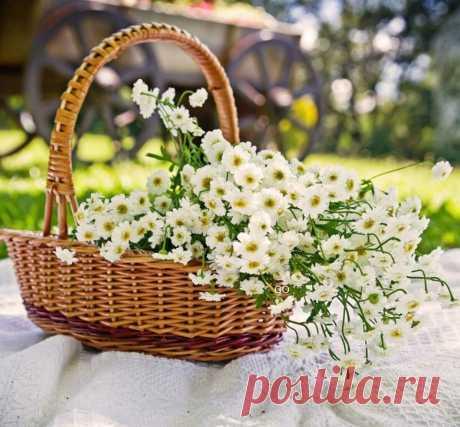 ღРай там, где распускаются цветы твоего истинного Я. Ад там — где твое Я топчут, а тебе что-то навязывают.  Ошо