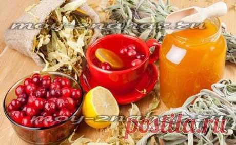 Клюква, чеснок и мед для чистки сосудов