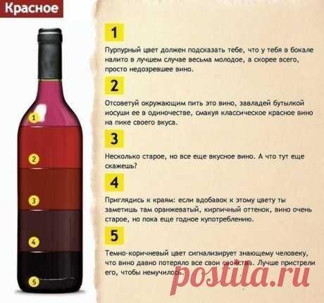 Узнаем качество вина по его цвету. Не дайте себя обмануть! — Полезные советы