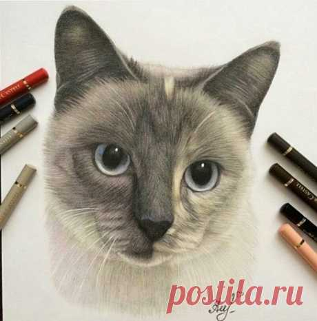Drawing pencil. How to you?