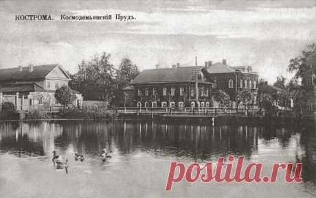 p195.jpg (1300×816)