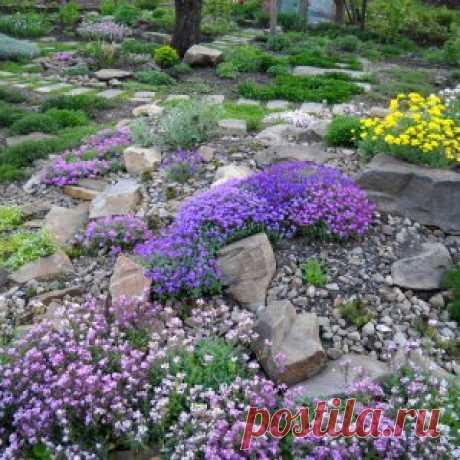 Выбираем камни для альпийской горки | Своими руками (Усадьба)