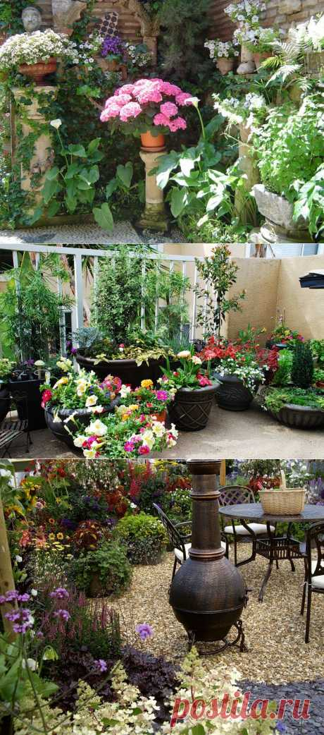Garden patio - маленький сад.