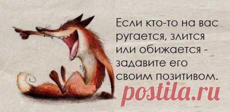фразы с юмором в картинках: 393 тыс изображений найдено в Яндекс.Картинках