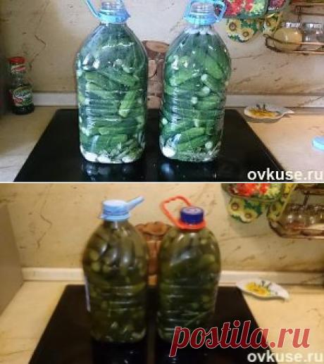Соленые огурцы (как из бочки) в пластиковой бутылке