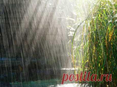 Дождь, капли дождя картинки (46 фото) видео