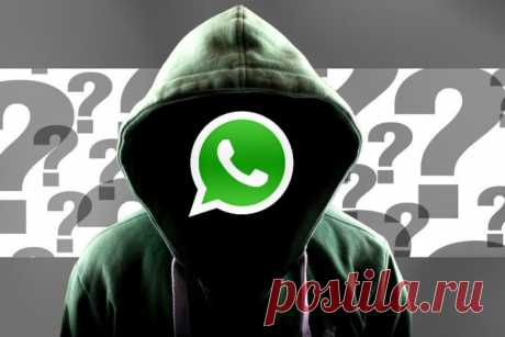WhatsApp: Como incluir el régimen del hombre invisible y esconder el geoemplazamiento | CHIP Rusia