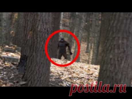 4 Terrifying BIGFOOT Encounters Caught on Camera