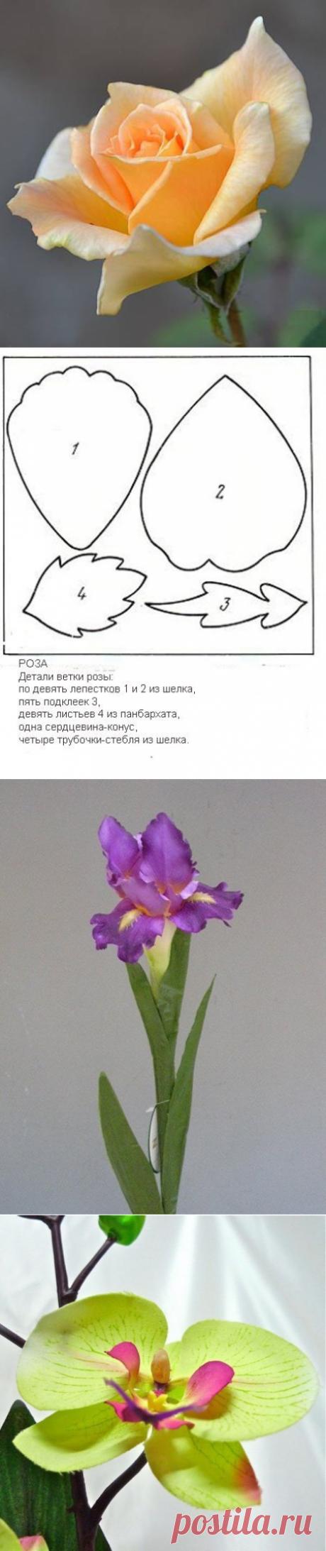 Шаблоны для изготовления цветов