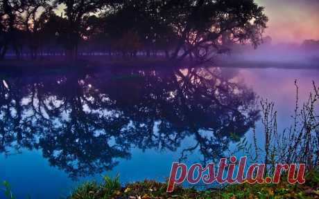 природа в фиолетовых тонах фото: 10 тыс изображений найдено в Яндекс.Картинках