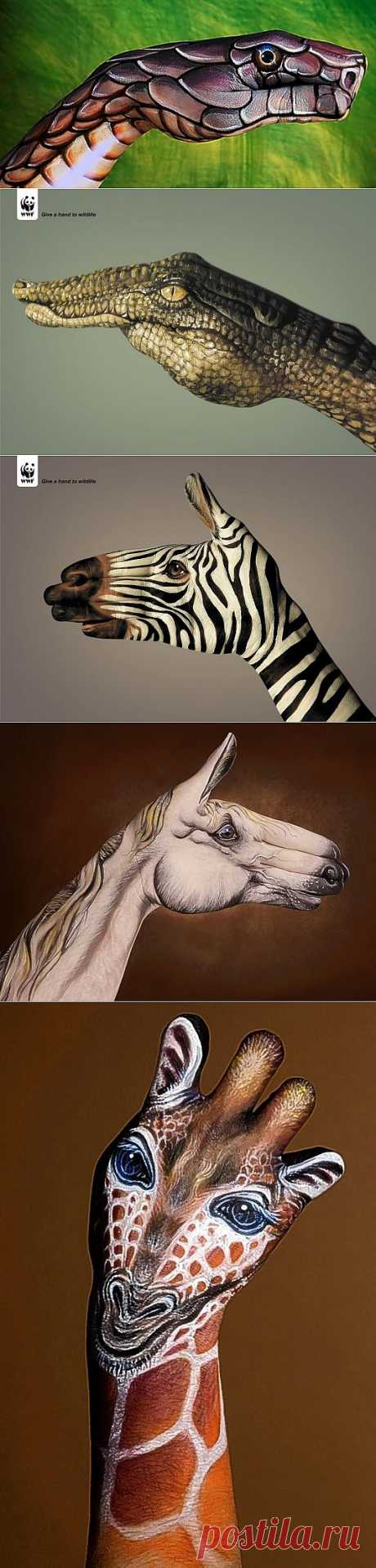 Hand Art – впечатляющие иллюстрации на руках от Guido Daniele   Newpix.ru - позитивный интернет-журнал