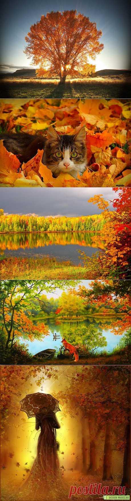 ОСЕННЕЕ НАСТРОЕНИЕ   Золото на бархате земли –   Осени-прелестницы примета.   Журавли на крыльях унесли   Разноцветное веселье лета.