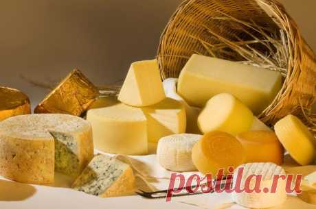 Можно ли есть сыр, на котором появилась плесень? | Вечные вопросы | Вопрос-Ответ | Аргументы и Факты