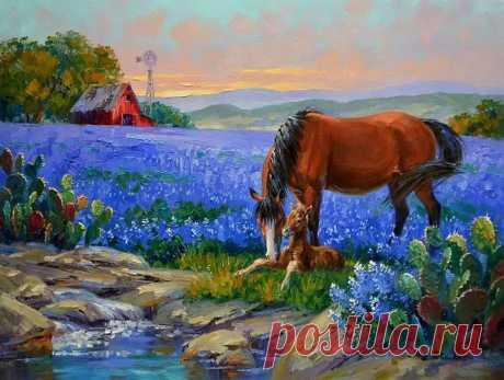 Cuadros Modernos Pinturas: Cultivos De Flores Bellos Paisajes de Mikki Senkarik