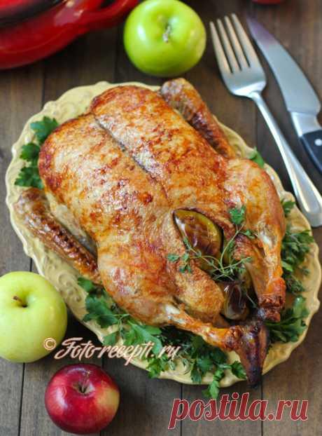 Утка с яблоками и медом, запеченная целиком - Фото-рецепты пошагового приготовления