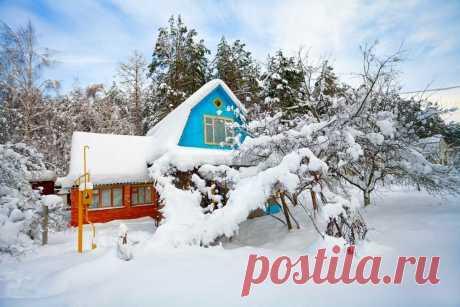 Дача зимой, чем заняться на загородном участке | Фермерс | Яндекс Дзен