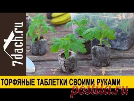 Торфяные таблетки своими руками - 7 дач