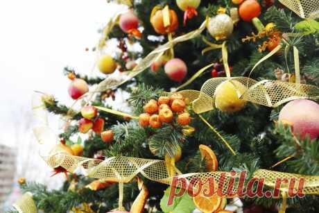 Когда появилась традиция наряжать новогоднюю ель