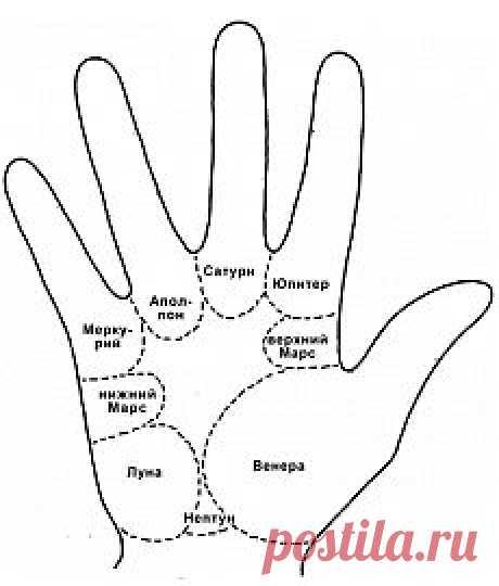 Как определить болезни человека по его рукам | ПолонСил.ру - социальная сеть здоровья