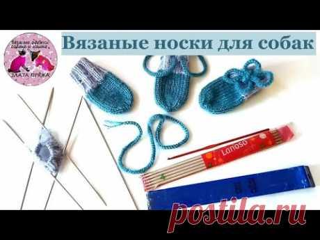 Вязаные носки для собаки