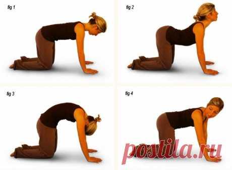 Несколько эффективных упражнений от обвисшего живота