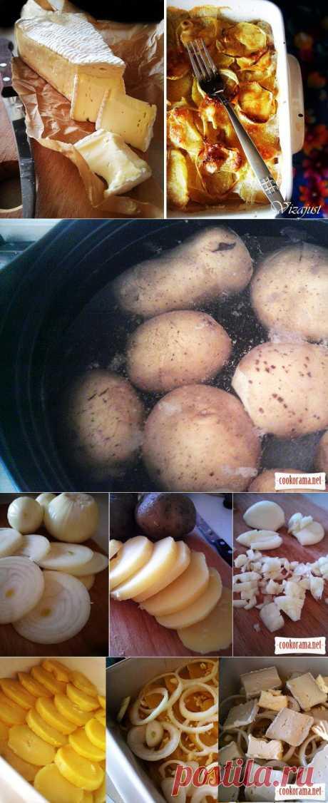 Запеченный картофель с сыром Бри / Овощные вторые блюда / Кукорама - вкусные рецепты!