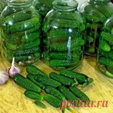 """Огурцы """"Злодейские"""" - и хрустящие, и ароматные и очень вкусные!"""