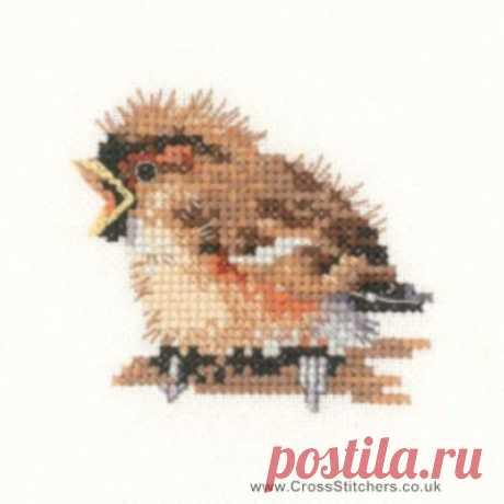 Birds - Sparrow - Valerie Pfeiffer Little Friends Cross Stitch Kit from Heritage Crafts