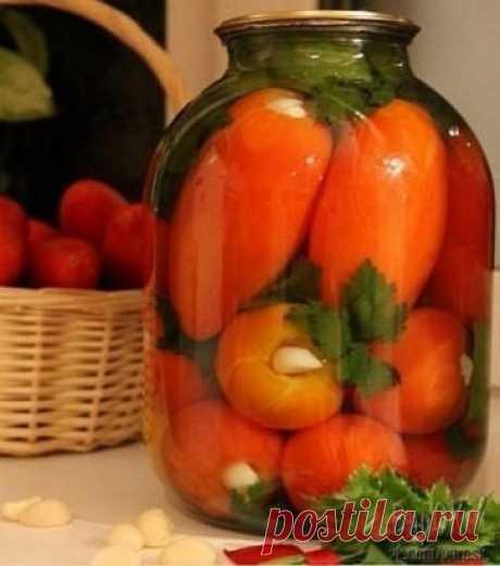 Помидоры «Язык проглотишь» вкуснейший рецепт! Способ приготовления: У помидоров вырезаем плодонжку и вставляем по зубчику чеснока. Укладываем их в банку, прослаивая веточками сельдерея, петрушки, дольками болгарского перца.  Добавляем 0,5 среднего стручка горького перца и заливаем кипятком на 20 минут. Воду сливаем, добавляем на 1 литр — 1 ст. л с горкой соли и 4 ст.л с горкой сахара, 50 мл. 9 % уксуса доводим до кипения, заливаем банки и закручиваем.