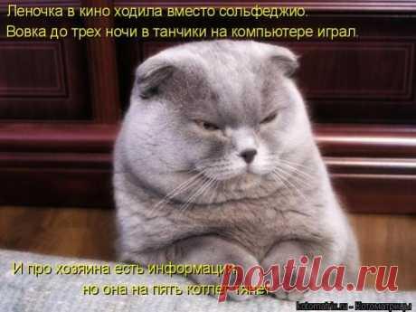 Управдом )))