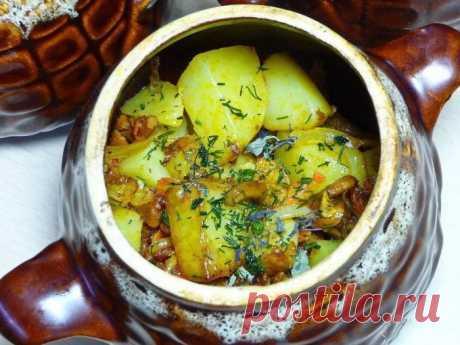 Как готовить картошку в горшочках в духовке: рецепты на скорую руку Как готовить картошку в горшочках в духовке. Описанные рецепты можно готовить как каждый день, так и как блюдо на праздничный стол. Понравится многим.