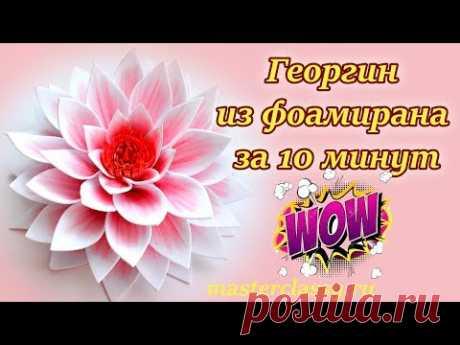 Класс! Цветы из фоамирана за 10 минут. Георгин своими руками: видео урок. Как сделать цветок?